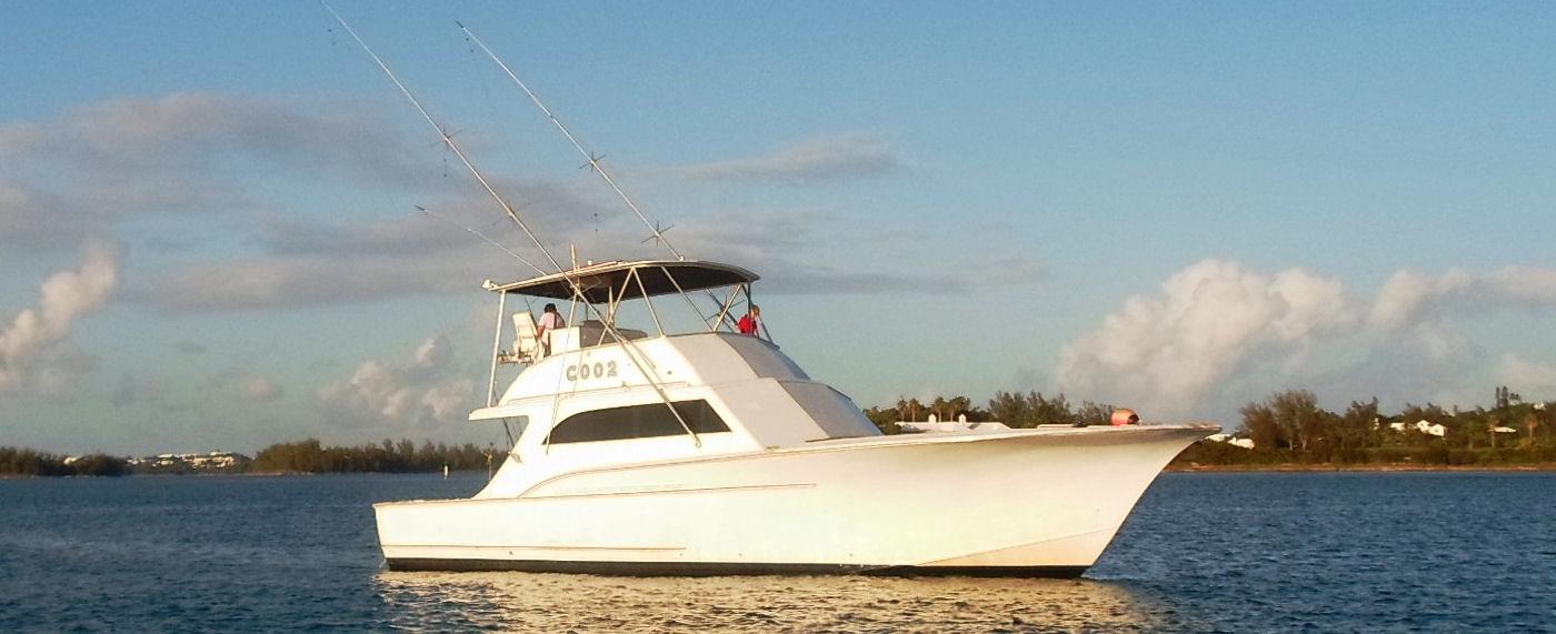 Reel addiction bermuda fishing charters deep sea fishing for Fishing in bermuda